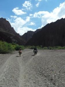 riding_horses_bolivia