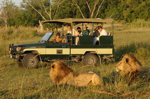 kili_lions_safari_vehicle