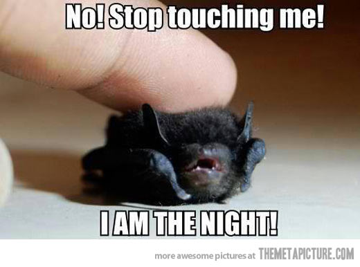 Funny-bat-cute-baby