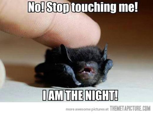Funny-bat-cute-baby
